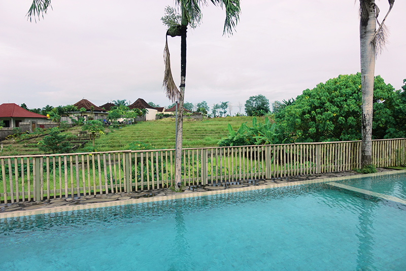 the-junno-villa-canggu-pool